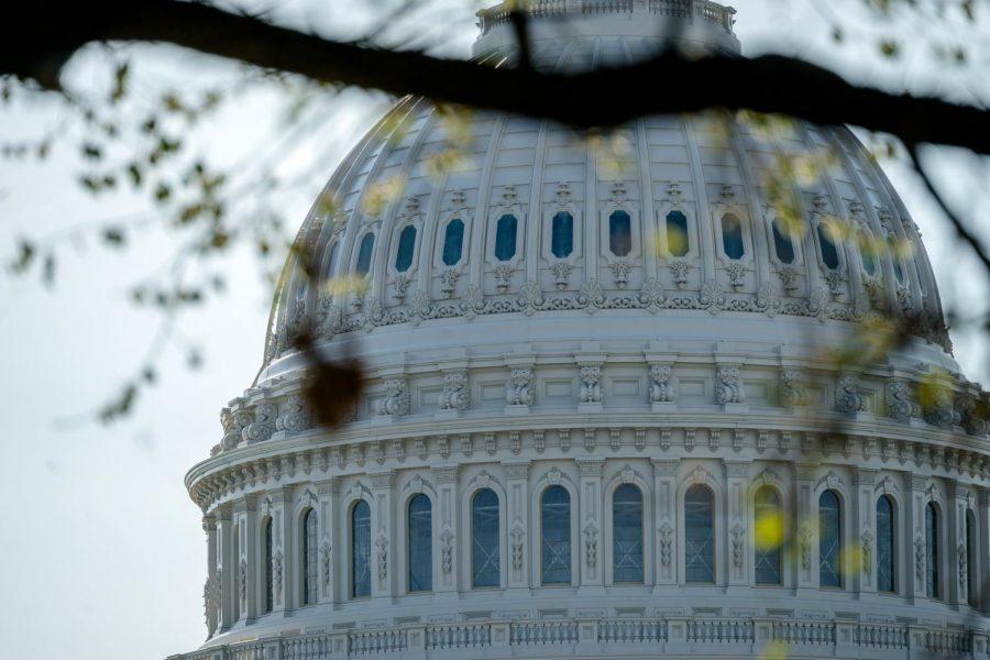 The top of the U.S. Congress Building peaks through the leaves of a tree. Columnist Nathaniel argues the filibuster should be abolished.