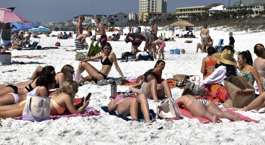 College+students+lie+on+Miramar+Beach+near+Destin%2C+FL+on+March+16+during+spring+break.+The+University+of+Illinois+is+considering+canceling+spring+break+this+year.