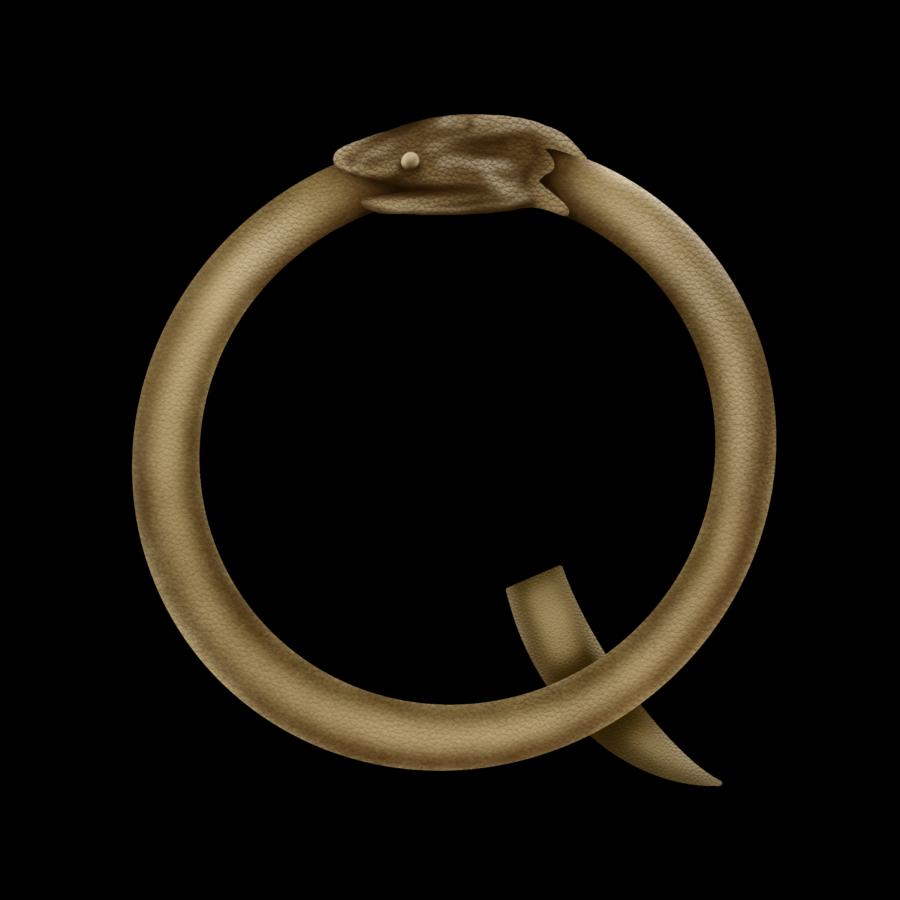 Opinion+%7C+QAnon+ineptitude+comes+full+circle