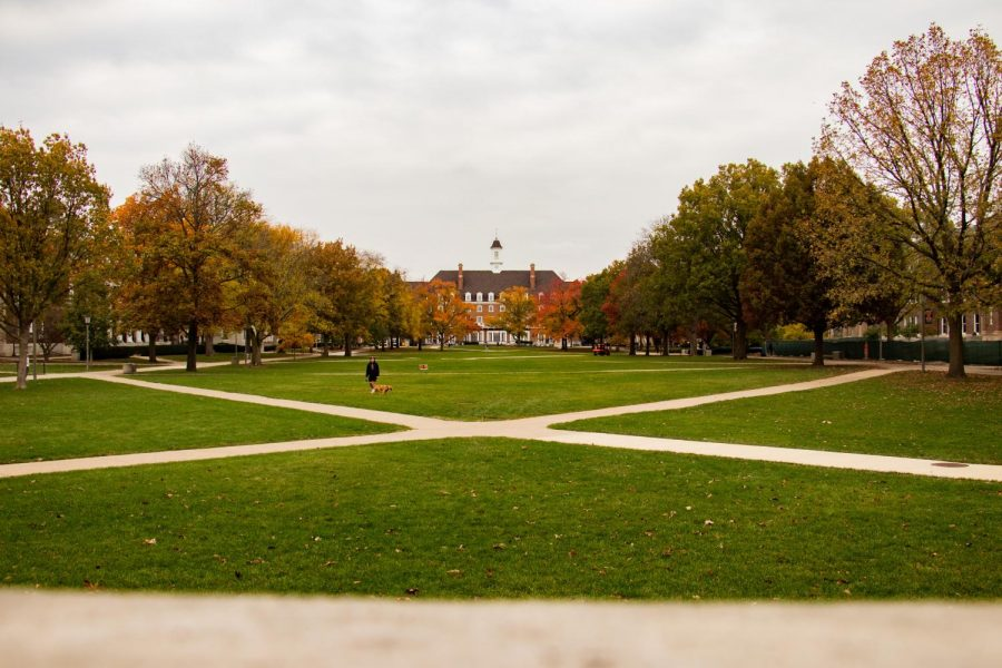 A student sits alone on the Main Quad at the University of Illinois on Oct. 29. Students have been dissatisfied with the lack of a spring break and claim it has led to increased worries with their mental health.