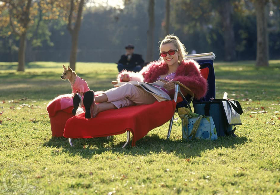 "Reese Witherspoon stars in the movie ""Legally Blonde"" with her dog Moonie which was released on July 13, 2001."