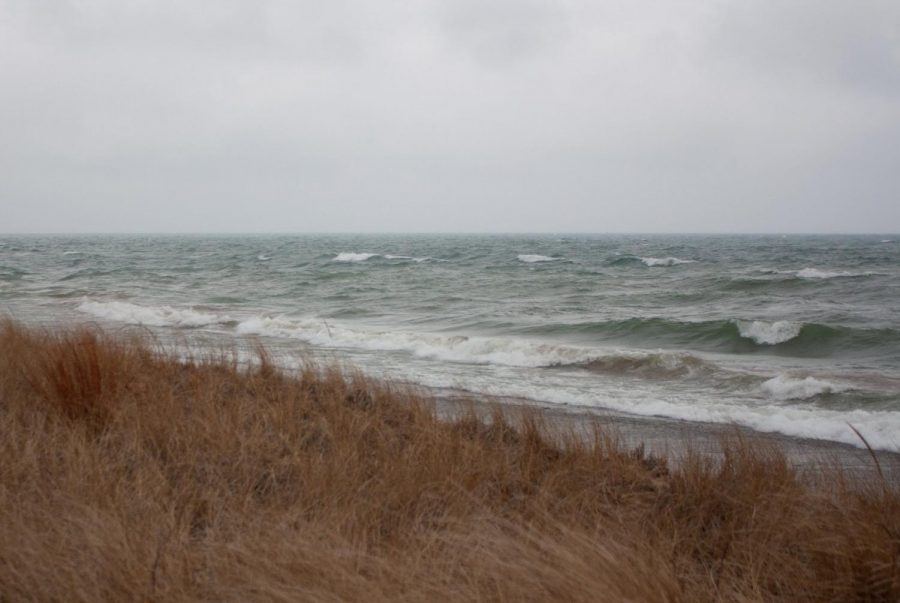 Waves crash on the shores of southern Michigan at Indiana Dunes National Park on Jan. 25, 2020. The Universities Students For Environmental Concerns will host Earth Week events from April 17 to April 23.