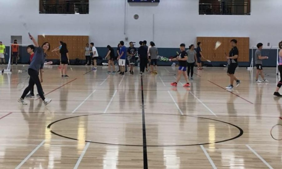 A girl plays badminton for fun on campus. The Illini Badminton Intercollegiate Sports Club celebrates its one year anniversary this year.