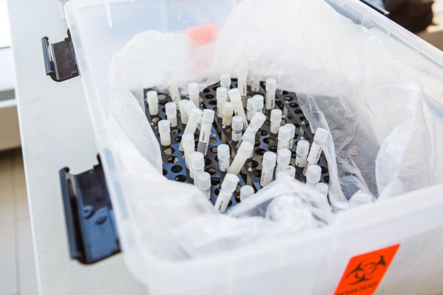 Many completed rapid COVID-19 saliva tests sit inside of a holding box at the ARC testing center on Feb. 1. Over 1,300 Illinois K-12 schools in 260 districts have signed up for SHIELD Testing after being funded through the CARES act.