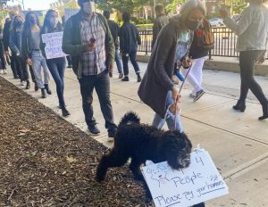 Members of the Graduate Employees' Organization protest outside of the Henry Administration Building on Thursday morning. The group demands the University take responsibility for its teaching staff during the COVID-19 pandemic.